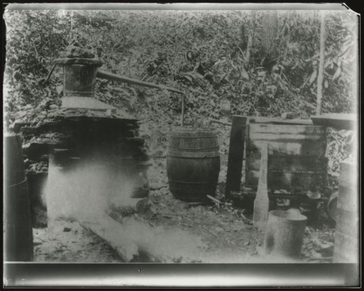 Print made from glass plate negative of a still near Ivanhoe, Virginia, c.1932